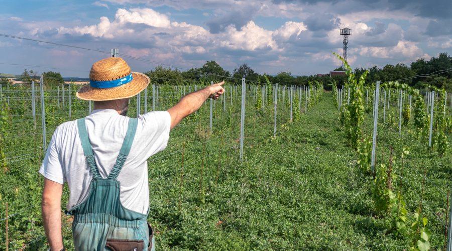 Nový Čas: Nový projekt turizmu ponúkne to, čo by mnohým Slovákom ani nenapadlo